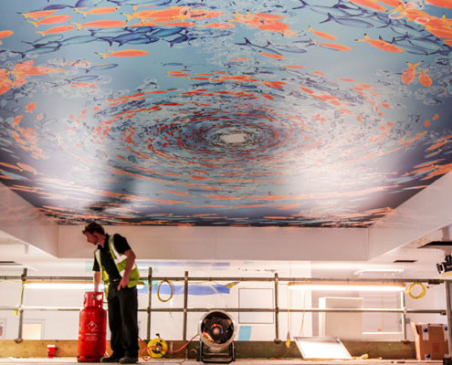 Barrisol Printed Stretch Ceiling