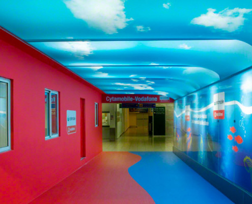 Barrisol Printed Ceilings and Walls