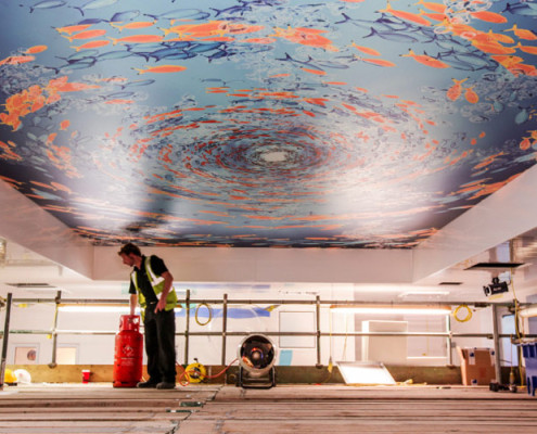 Barrisol Printed Stretch Ceiling
