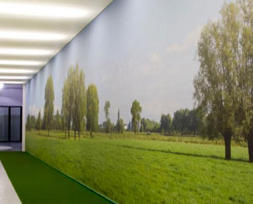 Barrisol Artolis Printed Wall Installation