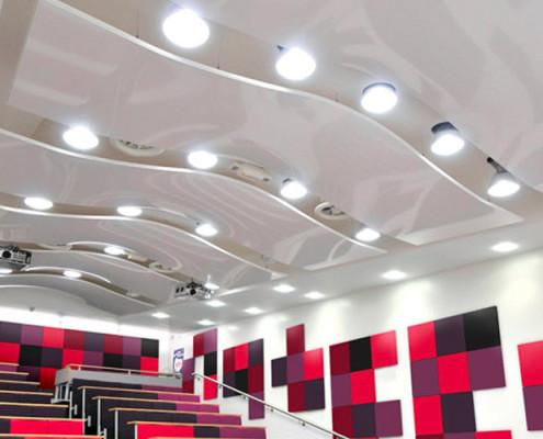 Barrisol Arcolis Acoustic Panels