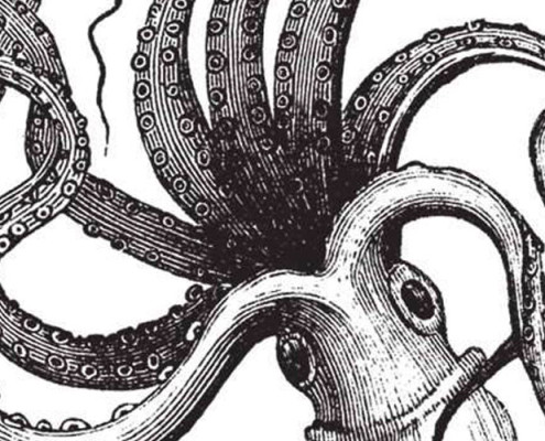 Barrisol Editions Engraving Squid